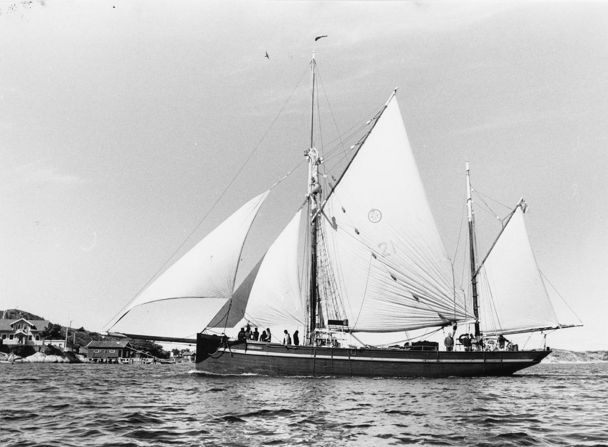 Fartyg: GRATITUDE                      Bredd över allt 6 meter Längd över allt 23,7 meter Segelyta 360 kvm Reg. Nr.: 7959 Byggår: 1903 Varv: Port Leven, England Övrigt: Callsign:SDIG Hemort: Göteborg Gratitude=Östanvåg =GRATITUDE  Fartygstypen kallas ketch och har 2 master. Den är byggd i Ek. Fartyget är T-klassat, dvs fartyget är ett sk traditionsfartyg. K-märkt. Fartyget är engagerat i skolseglingsverksamhet.  Byggd som seglande trålare. I fiske till 1952, seglande skolfartyg sedan 1959