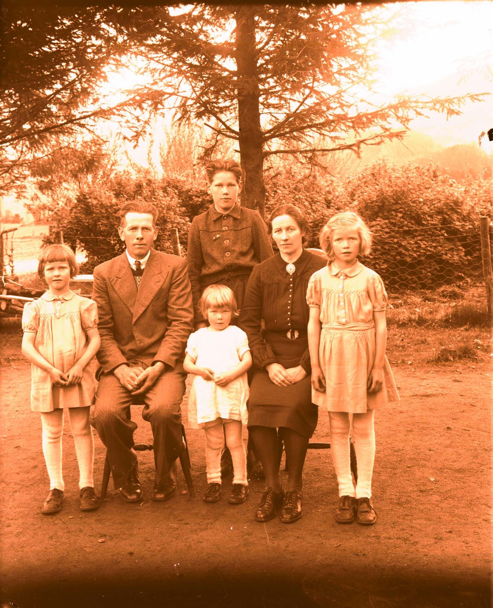 Eksteriør - Familiegruppe.
