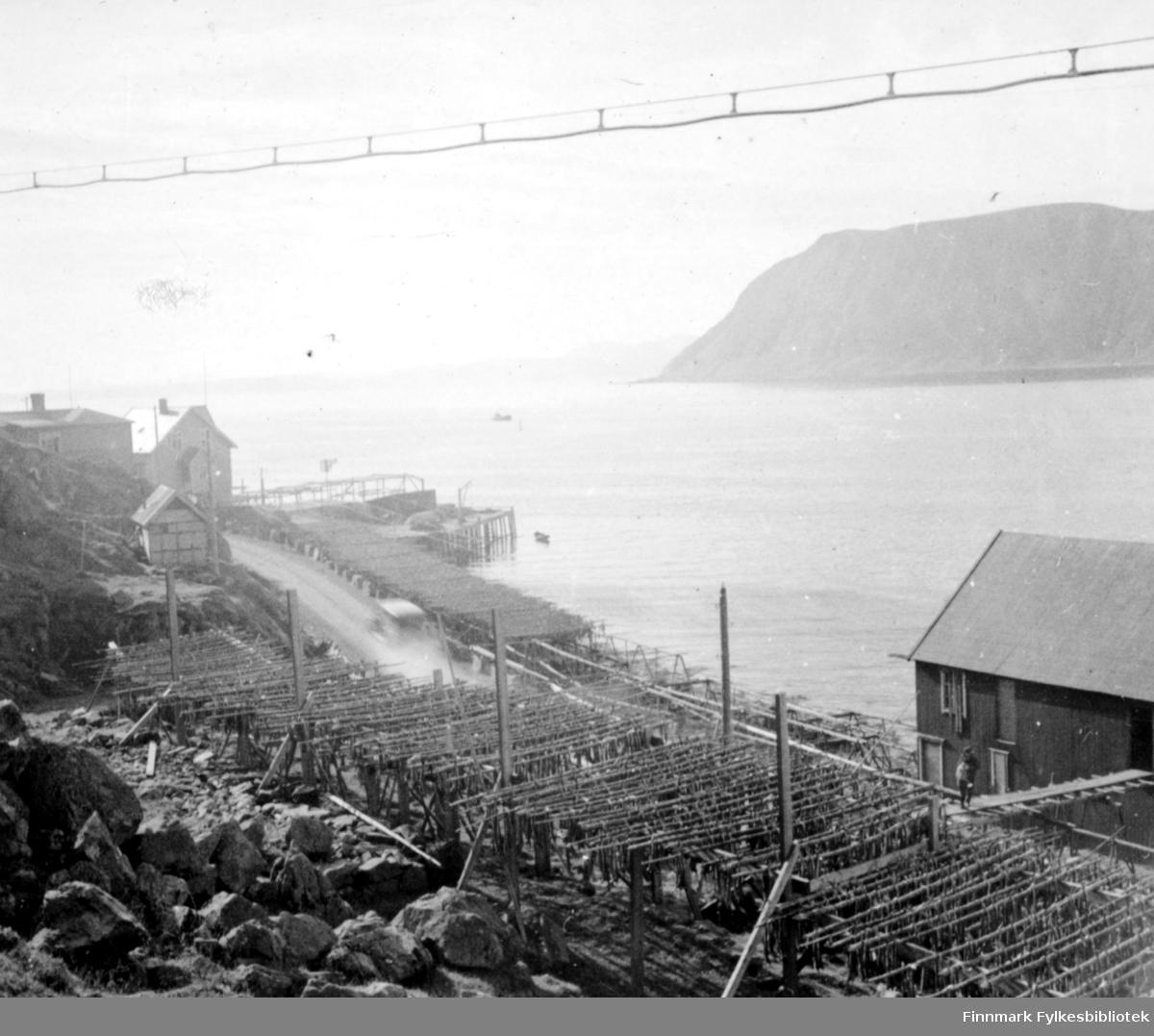 Landskapsbilde fotografert fra Honningsvåg. Foran på bildet fiskehjeller med fisk, noen bebyggelser og kai. Bildet er identisk med det førrige bildet men på veien kjør det en bil. Bildet er et stereobilde.  .