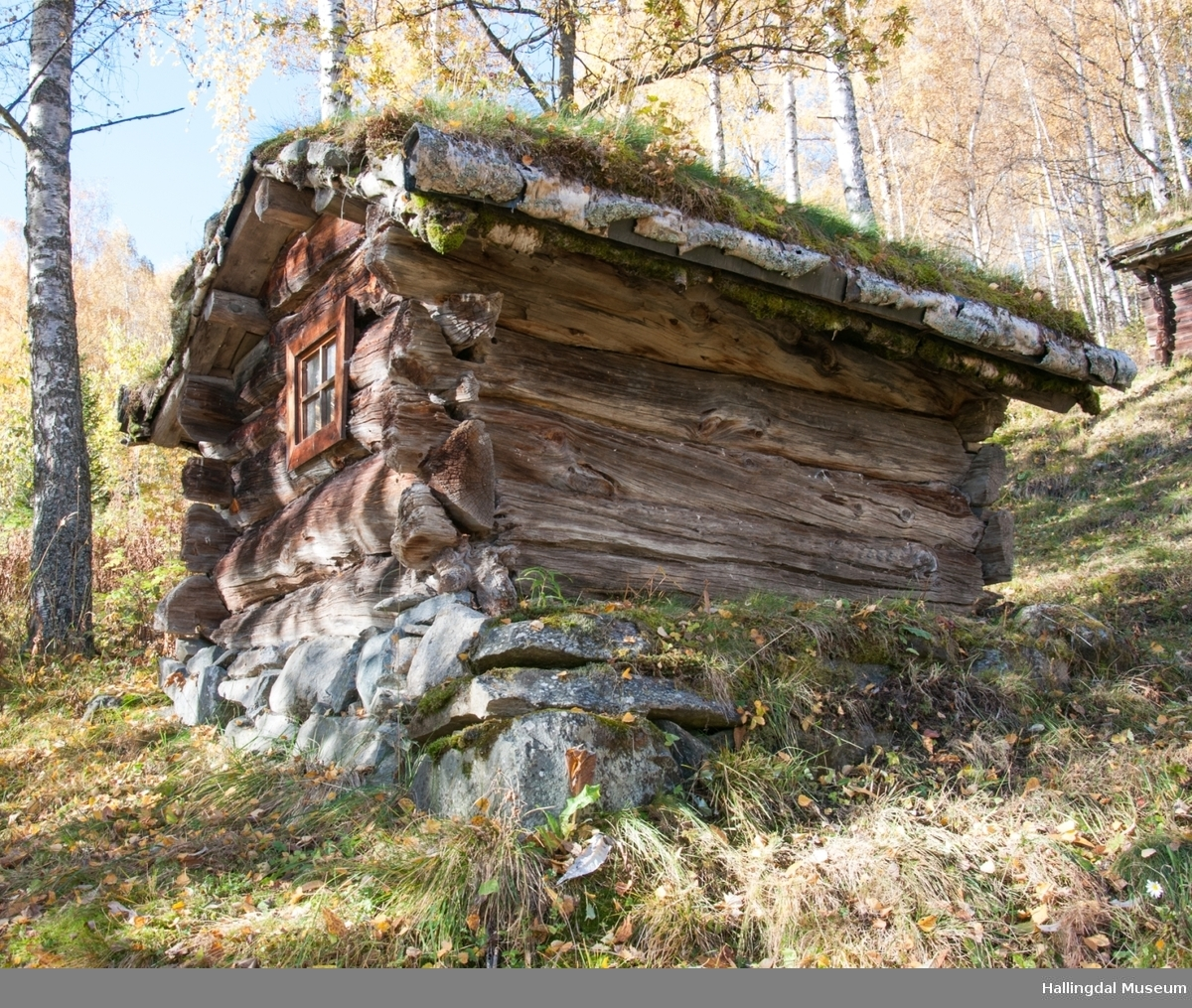 Kalvefjøs fra Fetjasølen (Bakka) på Ål Bygdamuseum, Leksvol