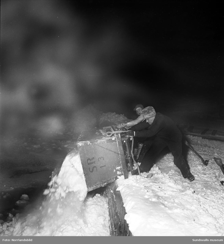 Efter ett rejält snöfall i december 1949 var det full huggning för stadens snöröjare. Elva mil gator och vägar skulle röjas och sandas, själva plogningen sköttes maskinellt men när det sedan var dags för bortforsling av snöhögar och vallar kom de fyrfota trotjänarna fortfarande till sin rätt.  Här är det Axel Svensson som styr Diana nedför Esplanaden för att tippa ännu ett snölass i Selångersån. Renhållningsverket hade 60 man i personalstyrkan vid den här tiden och hade tillgång till 15 lastbilar, varav tre moderna framhjulsdrivna som var mycket användbara i den backiga terrängen, elva snöplogar och två traktorer med snöskopa. Och så de åtta hästarna förstås. Vid katastroftillbud med osedvanlig halka eller hård snöstorm kunde man dessutom ta in 20-30 extra hästar och 20-100 extra arbetare. Den här vintern såg verkets chef, A.S. Nilsson, mycket fram emot en nymodighet på ingång till maskinparken, nämligen snöslungan. Bakom hästekipaget på en av bilderna syns den numera rivna biografen Röda Kvarn.