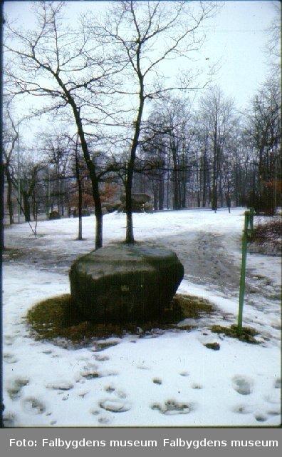 Ballerstenen, Plantis i Falköping.