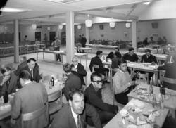 Schack VM i augusti 1966, student-schack.