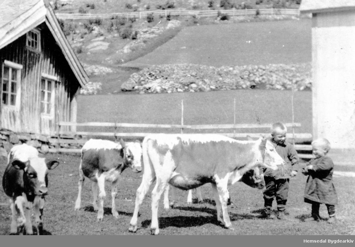 Truleg Halvor K. Thorset, fødd 1918 og Ola K. Thorset, fødd 1922