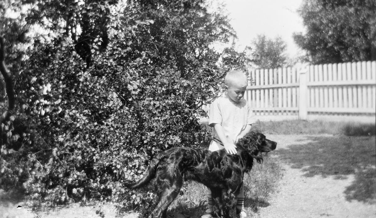 Iacob Ihlen Mathiesen står i en hage og klapper en hund, trolig en gordon setter. Bak hunden og gutten sees hagetrær og et stakittgjerde.