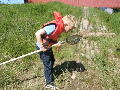 Foto av en gutt som ser etter vanninsekter i stangsilen sin