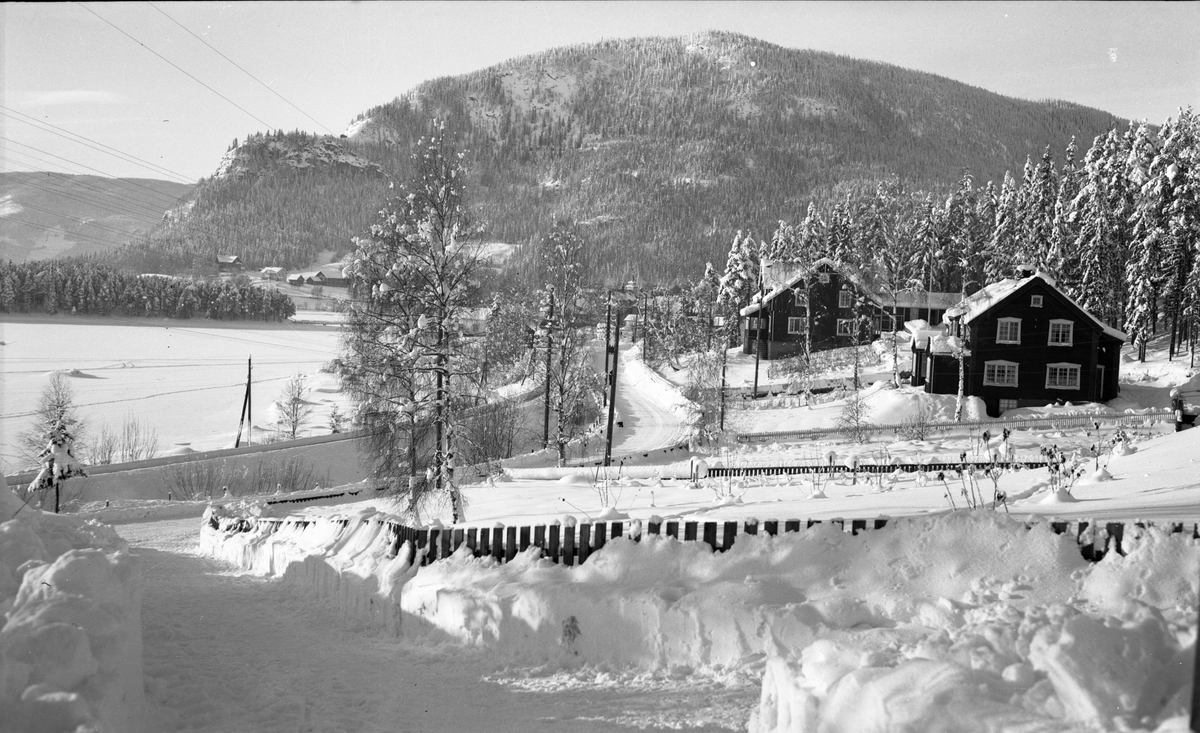 Villaer i Vika ved Strandefjorden. Solhaug til venstre og Lyseng til høyre
