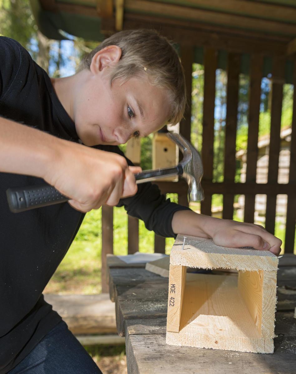 Gutt snekrer fuglekasse under temadagene Skog og vann. 10/6 2014 (Foto/Photo)