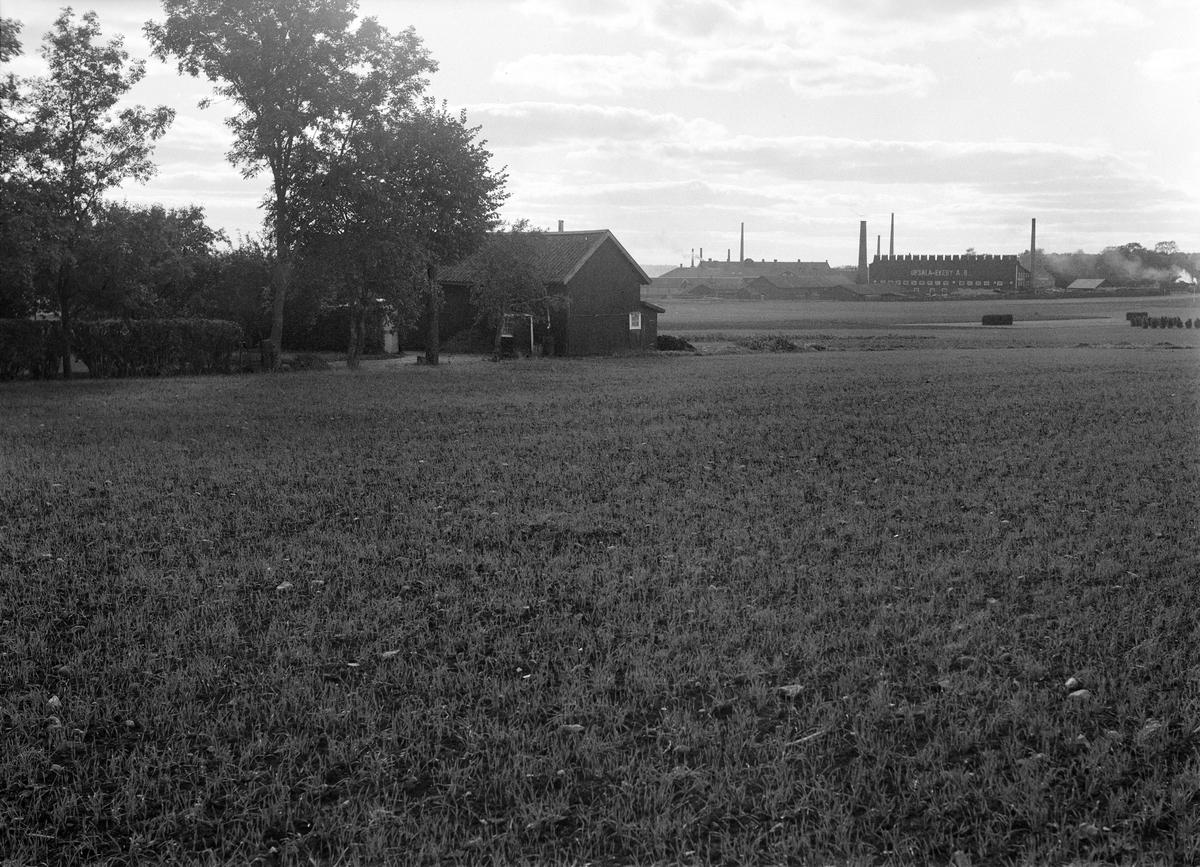 Det område sydväst om Berga gård på Kungsgärdet som avsatts för småstugebebyggelse. I fonden Upsala-Ekeby AB