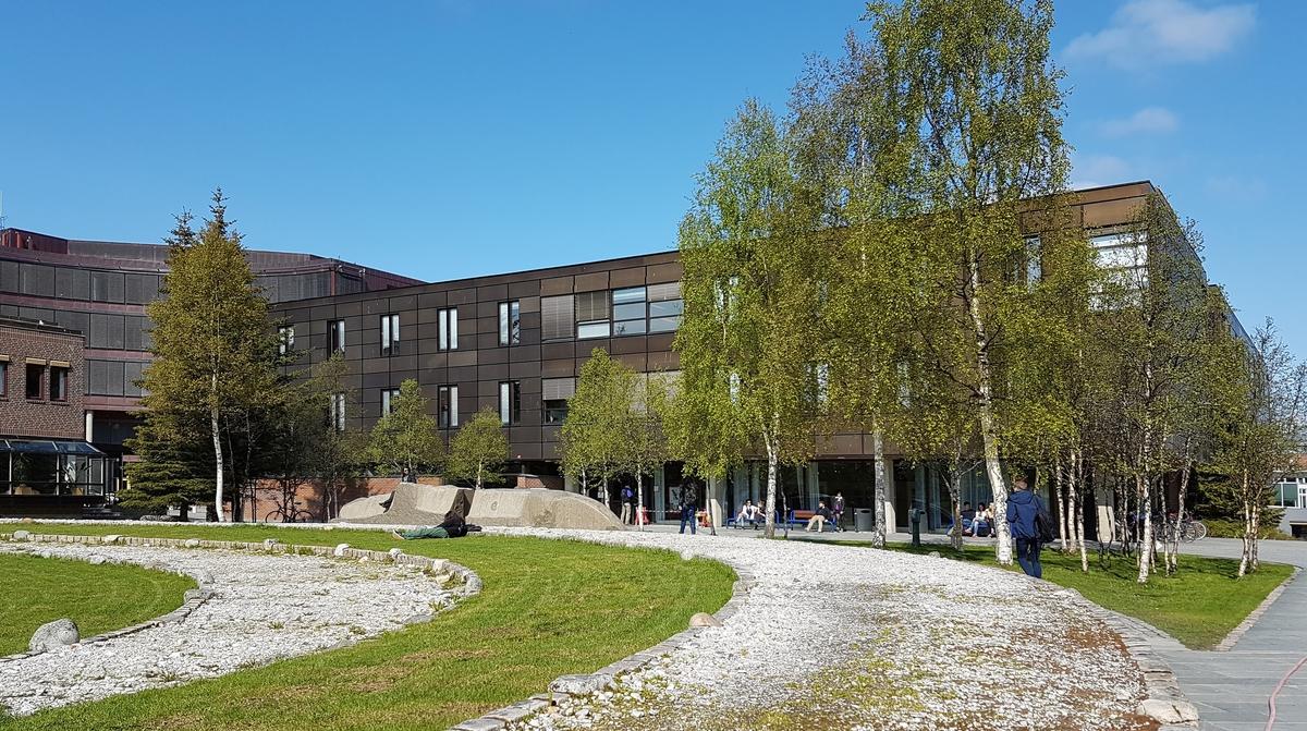 Den samiske kunstnaren Annelise Josefsen lagde ein steinskulptur til Universitetsplassen. To store steinblokkar, laga av stein frå Lødingen, står som «vaktarar» av labyrinten.
