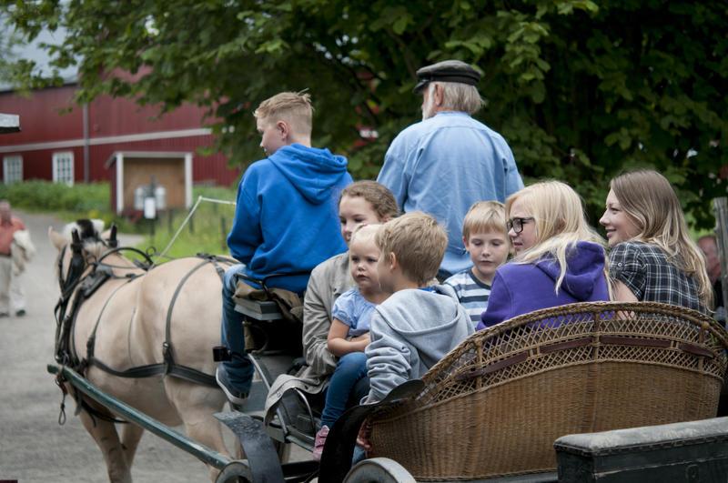 En gruppe barn og unge kjører med hest og vogn