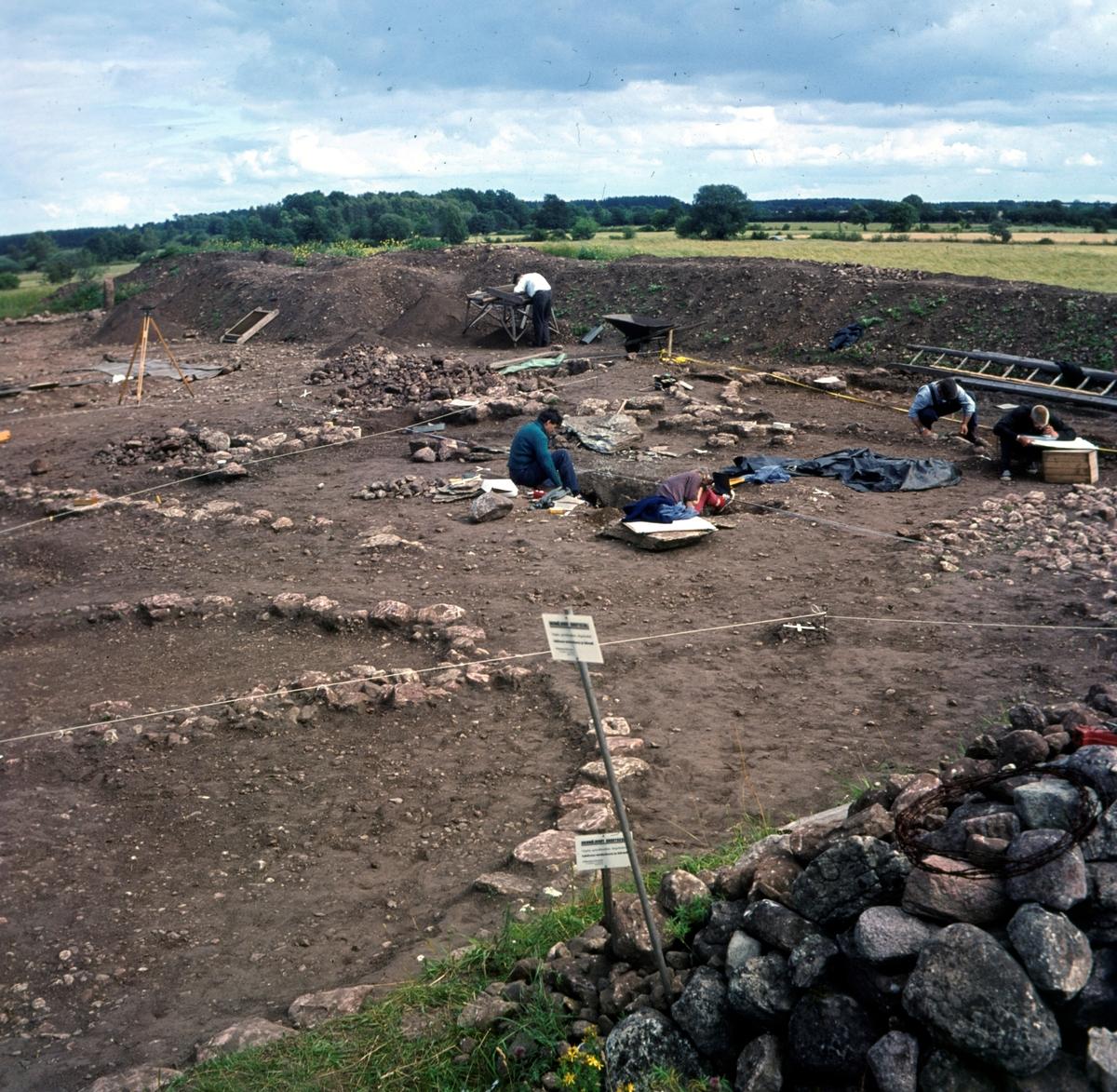 Översikt över utgrävning vid Skedemosse.