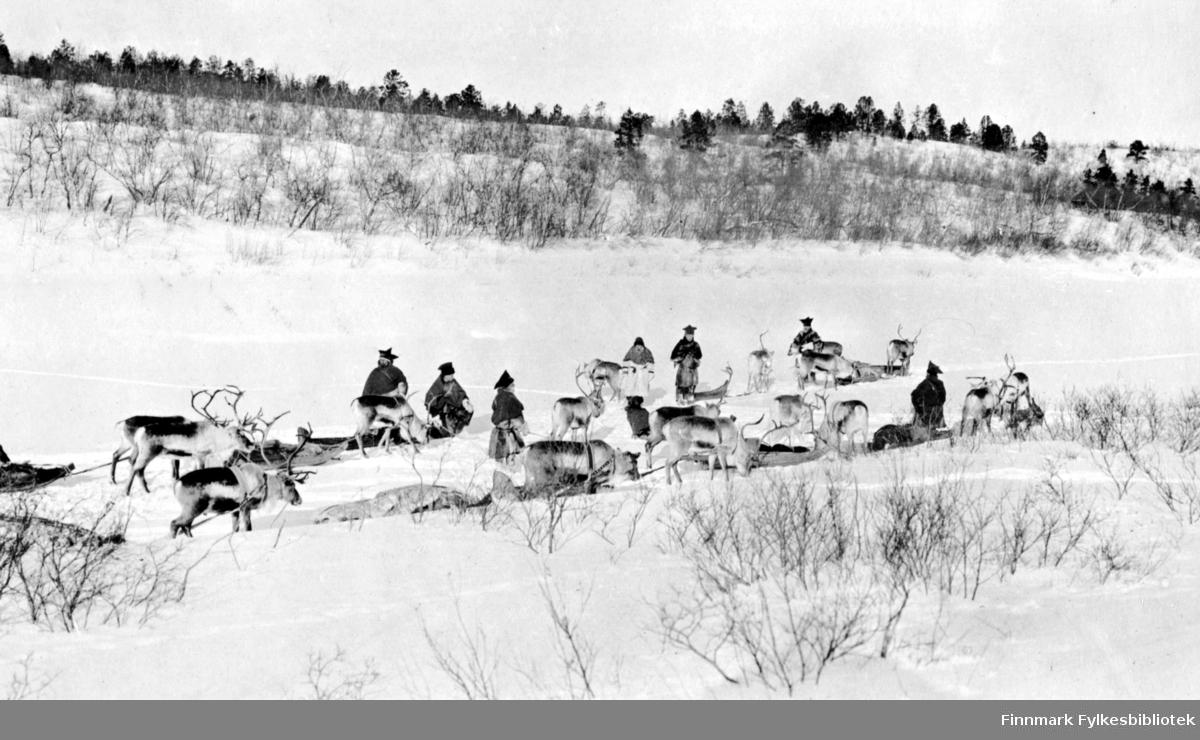 """""""Paa Karasjokka, mars 1917"""". I Karasjok, mars 1917. Følge med samer kledd i pesk, med kjørerein og sleder,  i vinterlandskap."""