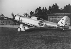 Flygplan B 5D märkt nummer 65 tillhörande F 13 Bråvalla moto