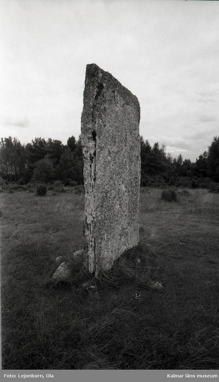 Tingstad flisor är ett gravfält på Stora alvaret, mellan Stora Dalby i Kastlösa socken och Gösslunda i Hulterstads socken i Mörbylånga kommun. Platsen är 220 x 75 meter stor och daterad till brons- och järnåldern.  Namnet kommer av två resta, tillhuggna kalkstensflisor (ca 3 meter höga och 1,5 meter breda), som i det öppna, trädlösa landskapet är synliga på långt håll. De har troligen fungerat som riktmärken för dem som färdades över Alvaret. Från många byar leder stigar eller enkla vägar till Tingstad flisor, som är Ölands mest kända tingsplats. Platsens nämns första gången i en handling från 1393. Ett annat tolkningsförslag är att flisorna, som står i 90° vinkel mot varandra, kan ha fungerat som ett solur, där den smalaste skuggan från vardera flisan markerat tingets början och slut.  Tingstad flisor på Kastlösa alvar på södra Öland är ett av Ölands mest kända, men svårtillgängliga fornminnen, och skall inte förväxlas med Tingsflisan i Köpings socken på mellersta Öland.  (Uppgifterna är hämtade från Wikipedia=.