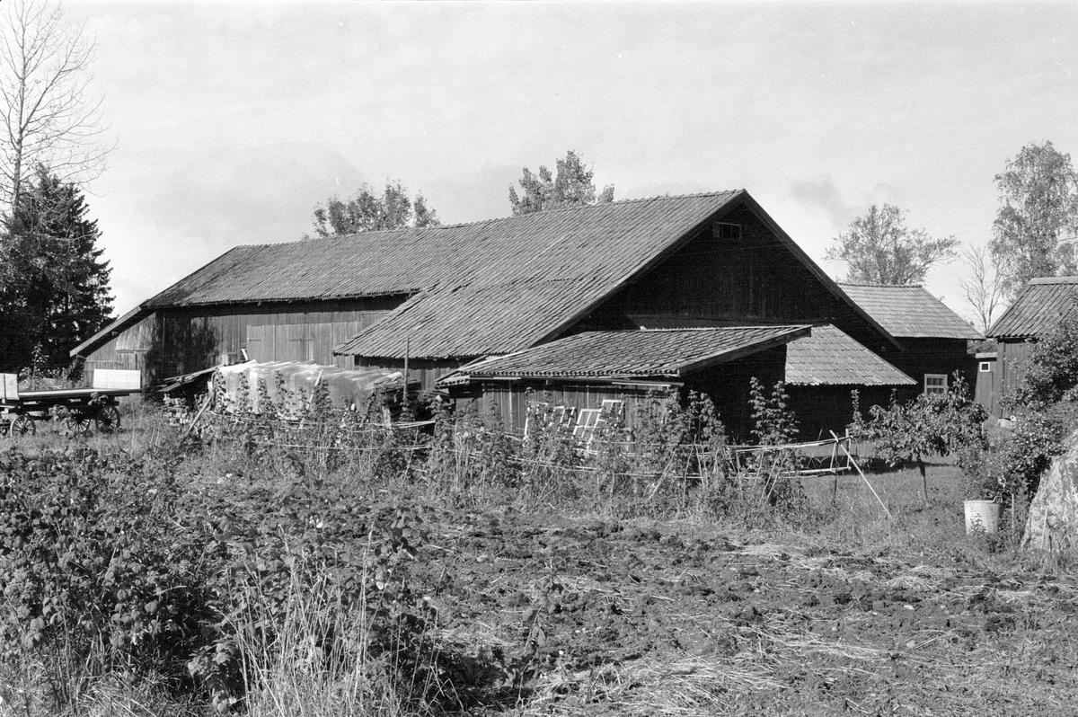 Vy från söder över Hånsta 2:3, Hånsta, Lena socken, Uppland 1978