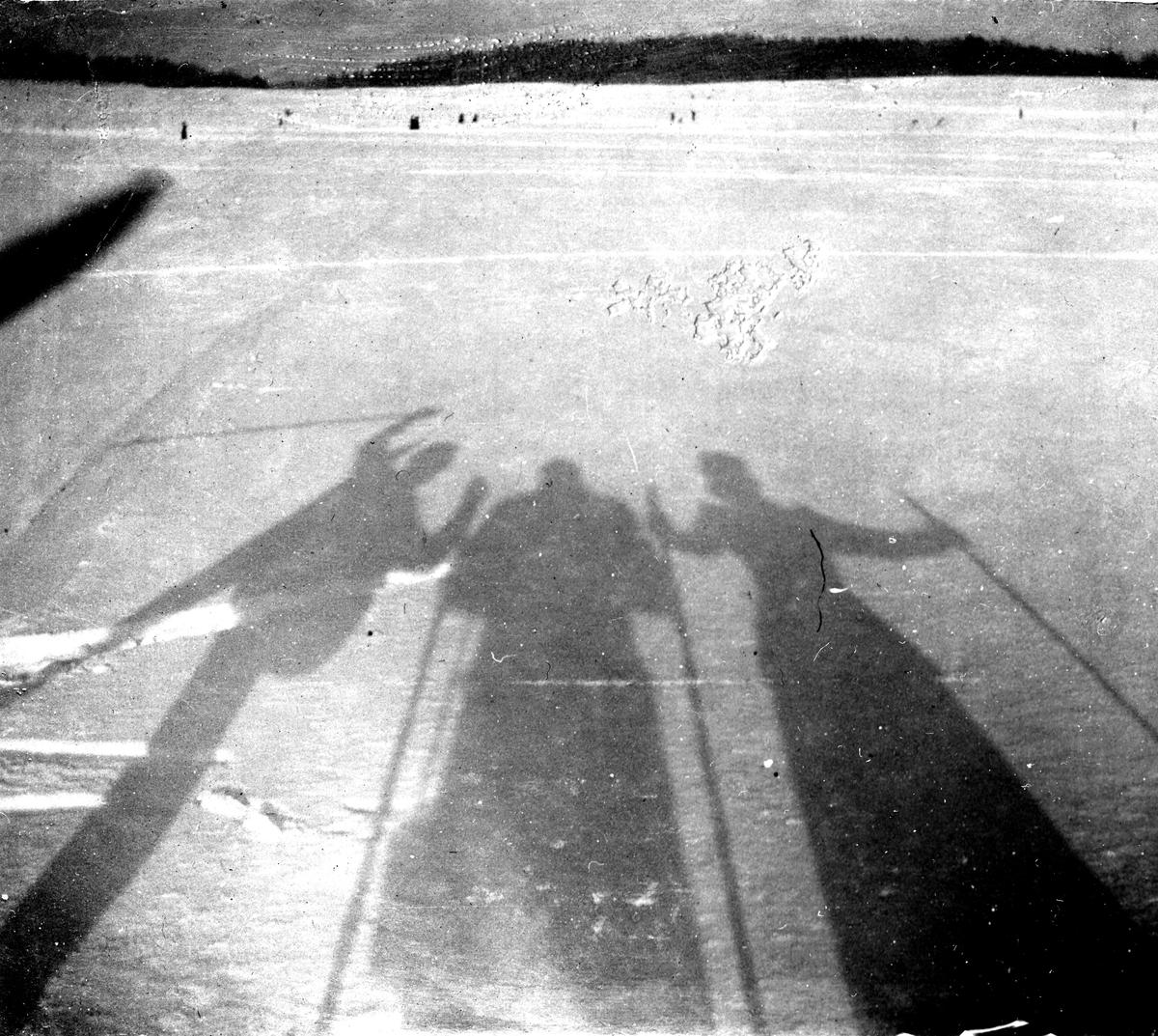Skidåkare, skuggbilder. Fotograf Alfred Bergendahl. Givare H Bergendahl.