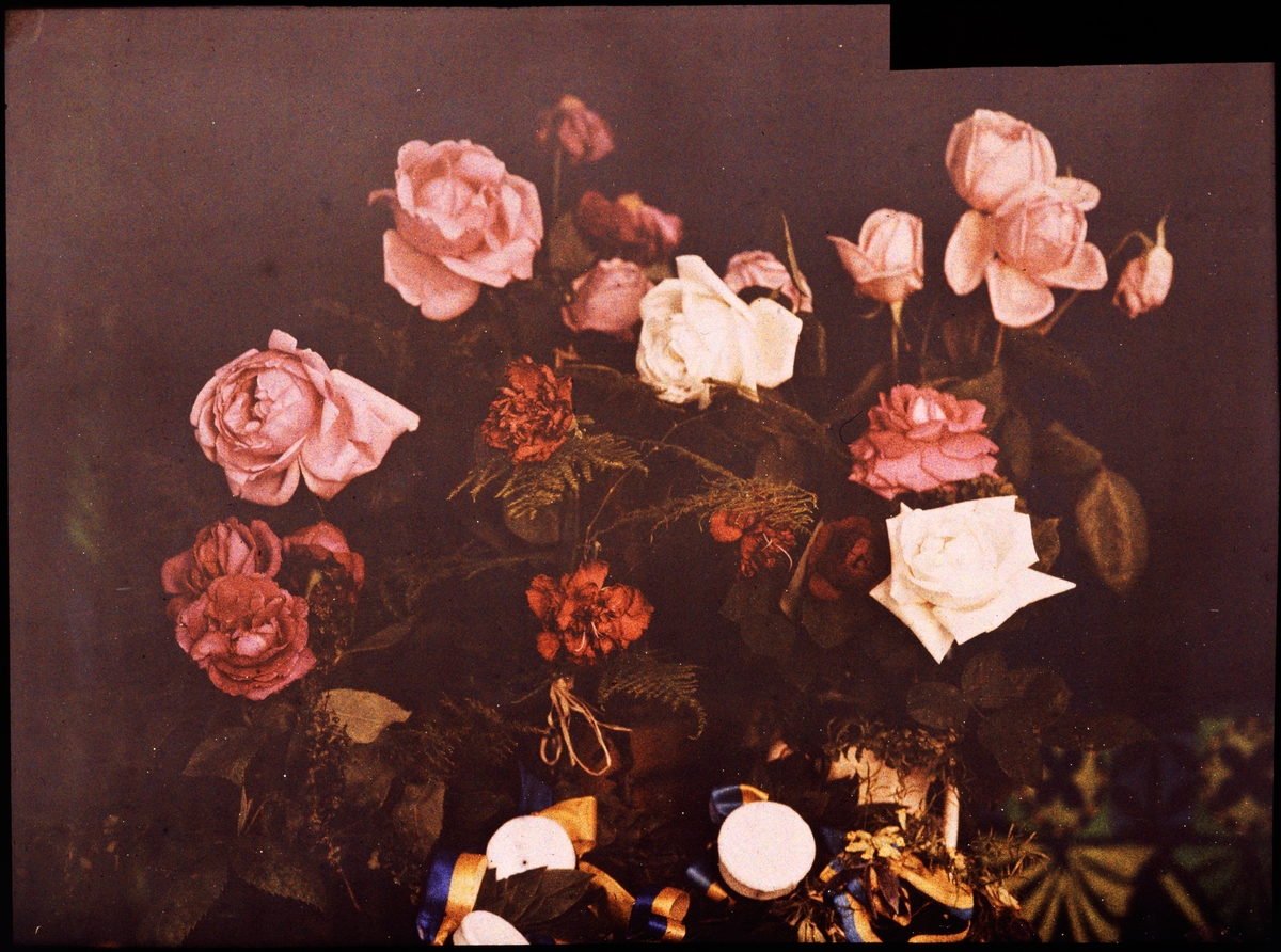 Lumières-autokrom. Blommor på studentdagen den 15 maj 1911.