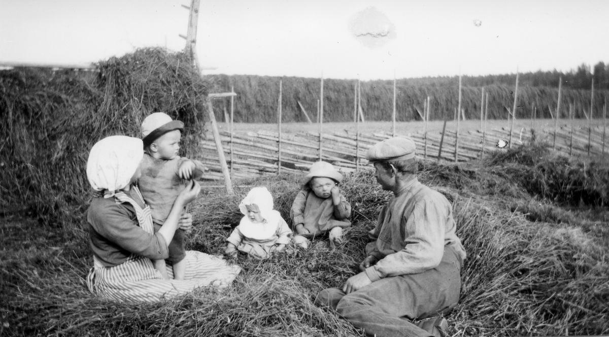 Slåtterdags för Maria och Sven Lindholm med barnen