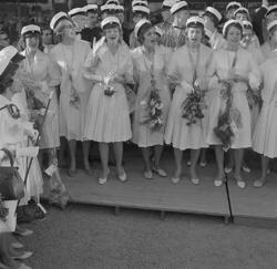Studenterna, andra d. 1960. Studenterna sjunger utanför Kat