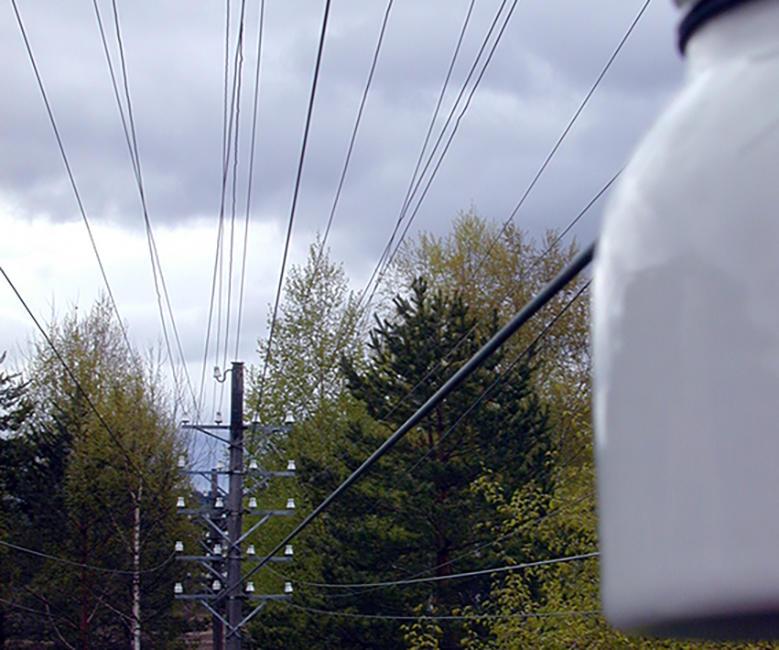 Linjekurser. Notodden Hjartdal nærbilde (Foto/Photo)