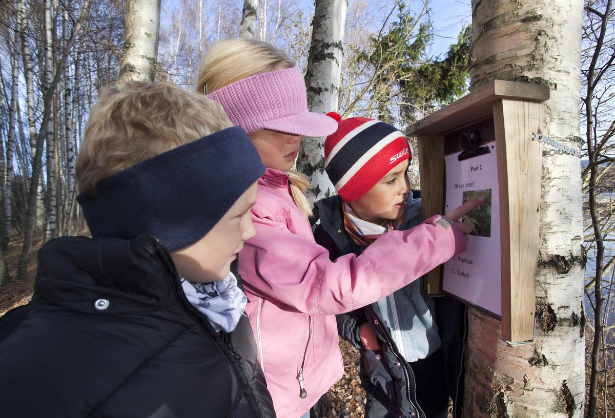 Foto av barn som prøver seg på natursti (Foto/Photo)