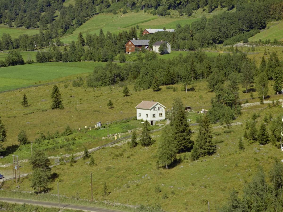 Kulturlandskap. Hvitt bolighus med bær-og grønnsakhage. Granskog. Gårdsbruk bak