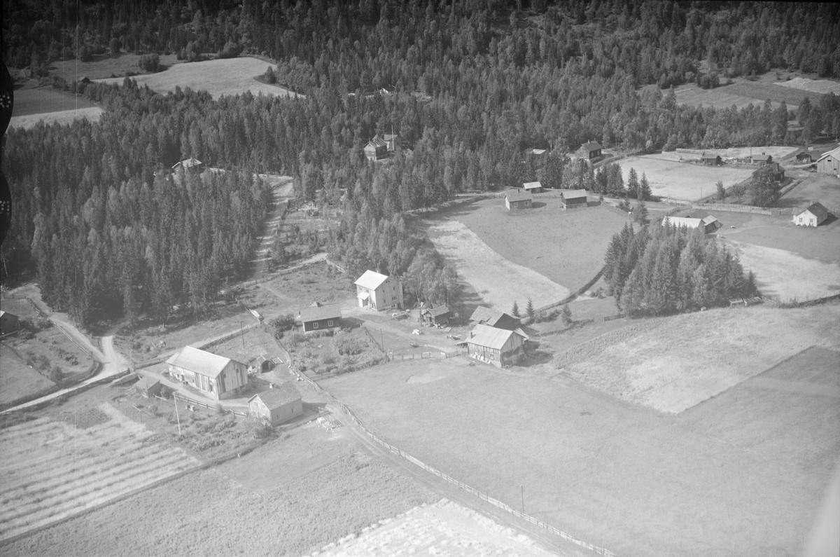 Ukjent gård, Øyer, 1953, oversiktsbilde Øyer vestside, flere gårder, kjøkkenhage, jordbruk, blandingsskog
