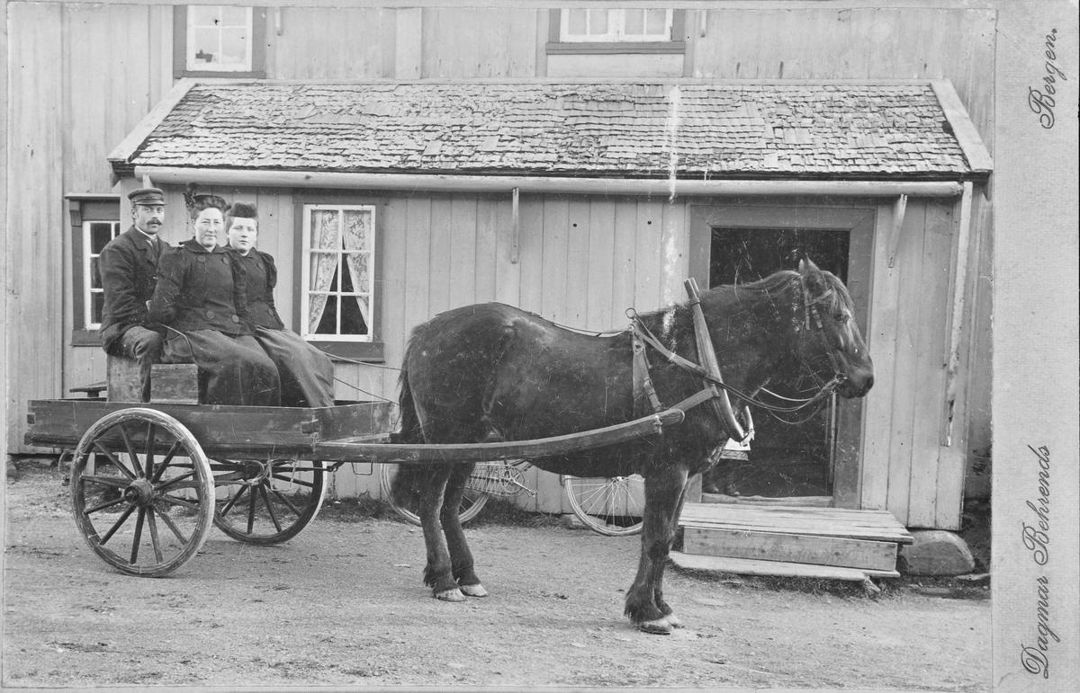 Hest og vogn med passasjerer i Beian.