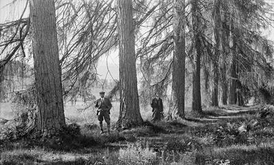 De såkalte «Sandviklerkene» i Tingvoll kommune på Nord-Møre, fotografert i 1932.