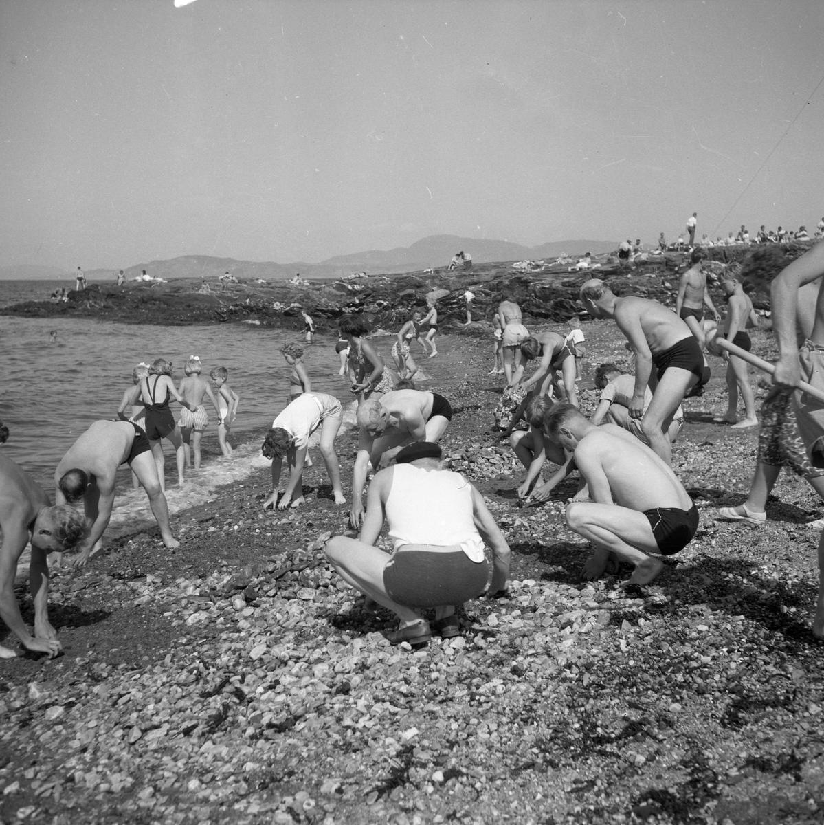 Badeliv og strandrydding på Vikhammerløkka