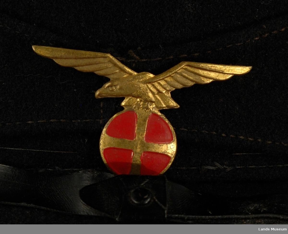 Liten nål hvor motivet er en ørn i gull på toppen av en rød runding med et gullkors.