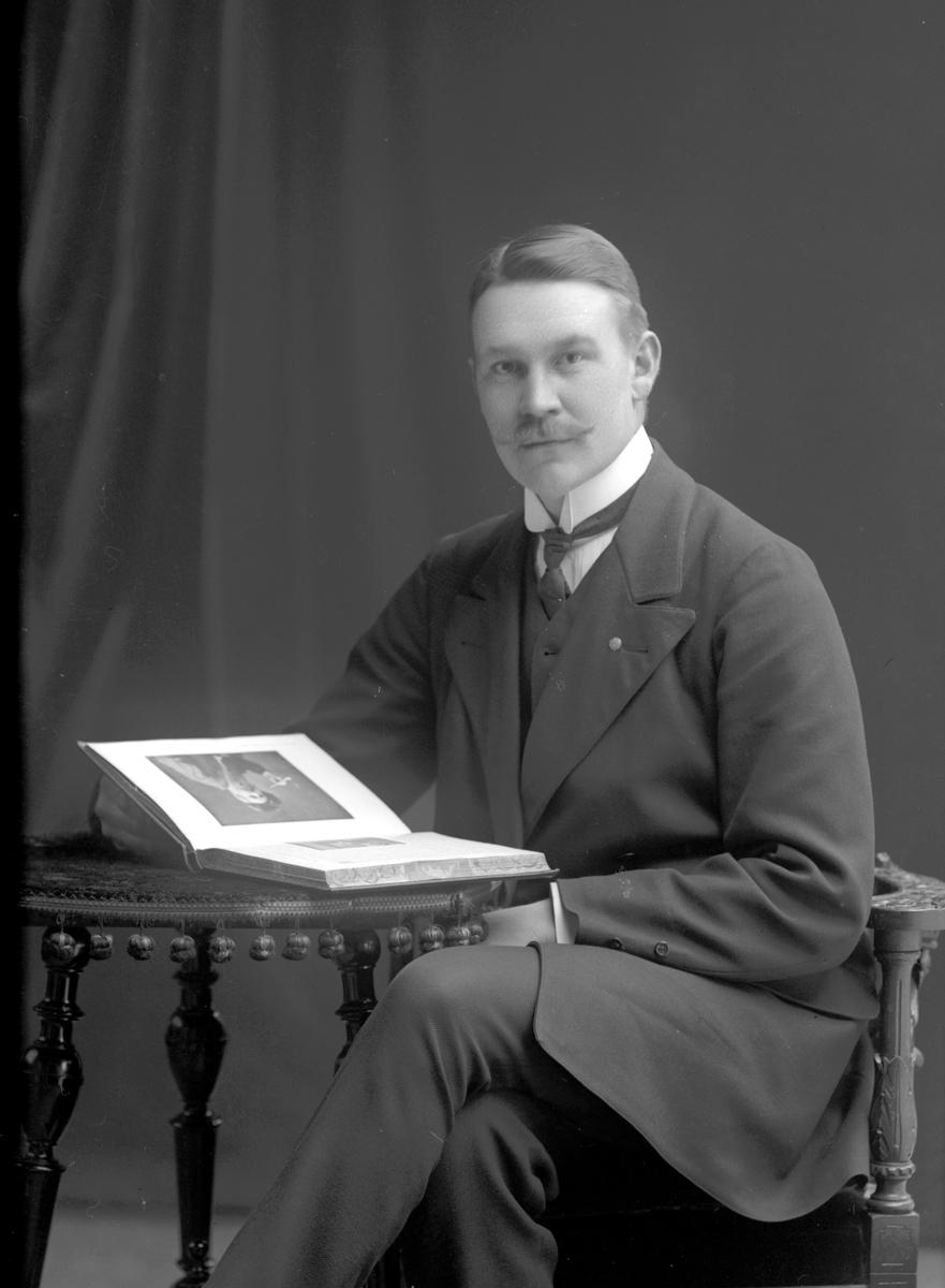 Eric Segerholm, Kungsgården