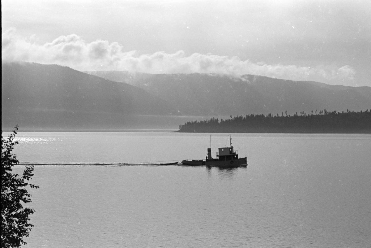 SÆVAT (1920) på vei inn Viksvika mot Tangen. Tømmerbåt, slepebåt, mjøsbåt, Mjøsa.