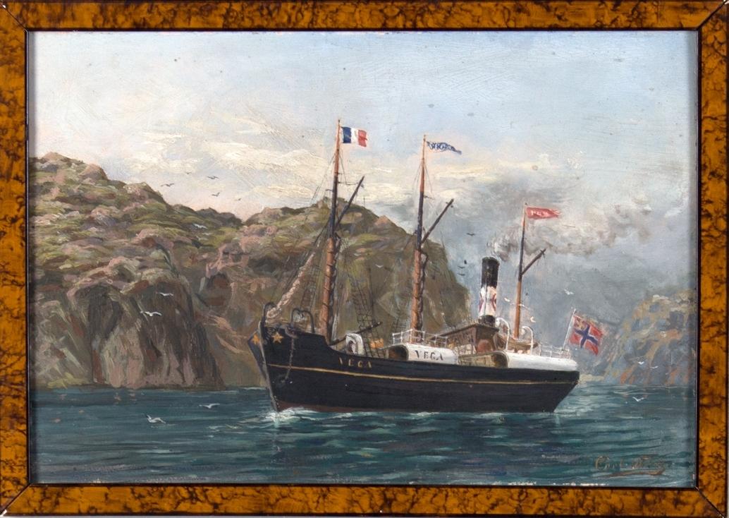 Dampskipet VEGA seilende langs en fjellkyst. Fransk flagg på fortopp, norsk flagg med unionsmerke i akter.