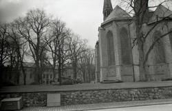 Trädfällning i domkyrkoparken. Domkyrkan sedd från Ågatan.