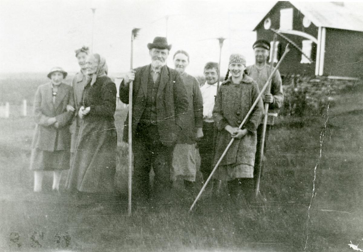 Slåttonn på Valhall, Brattrudsetrane, 1929.
