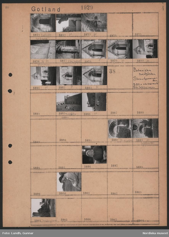 """Motiv: Gotland, Kyrka, Djävulsfigur;  Exteriör av kyrka """"Hablingbo nord portal"""", gravstenar """"H´bo gravstenar"""", detaljer av byggnad """"H´bo sydportal"""".  Motiv: Gotland, Botaniska trädgården, Strandpromenaden, D.B.V.s restaurant, Frk Schlesinger;  Vy över nordöstra Ringmuren, barn sitter nedanför Ringmuren, porträtt av kvinna, vy över Ringmuren """"Nordergravar""""."""