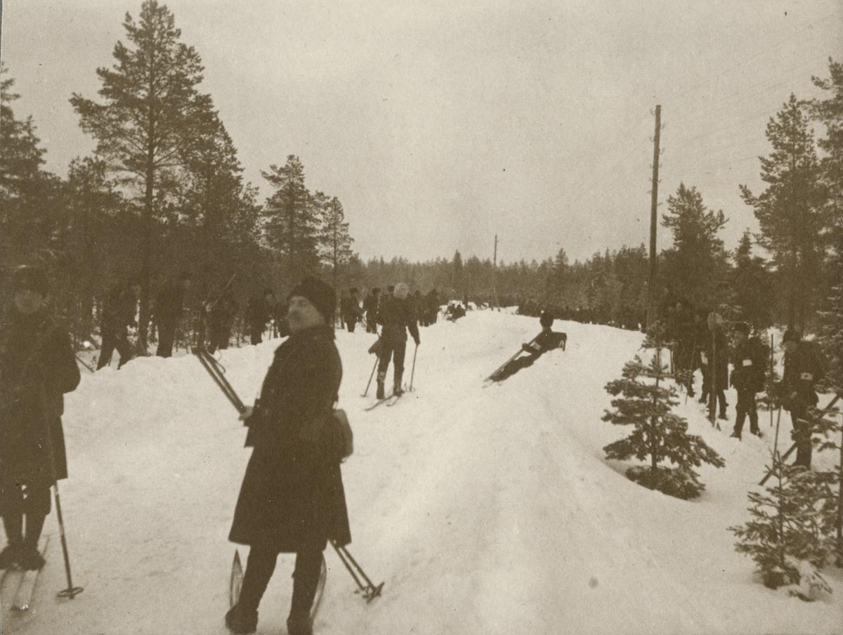 En grupp soldater på skidor vid en väg i skogen.