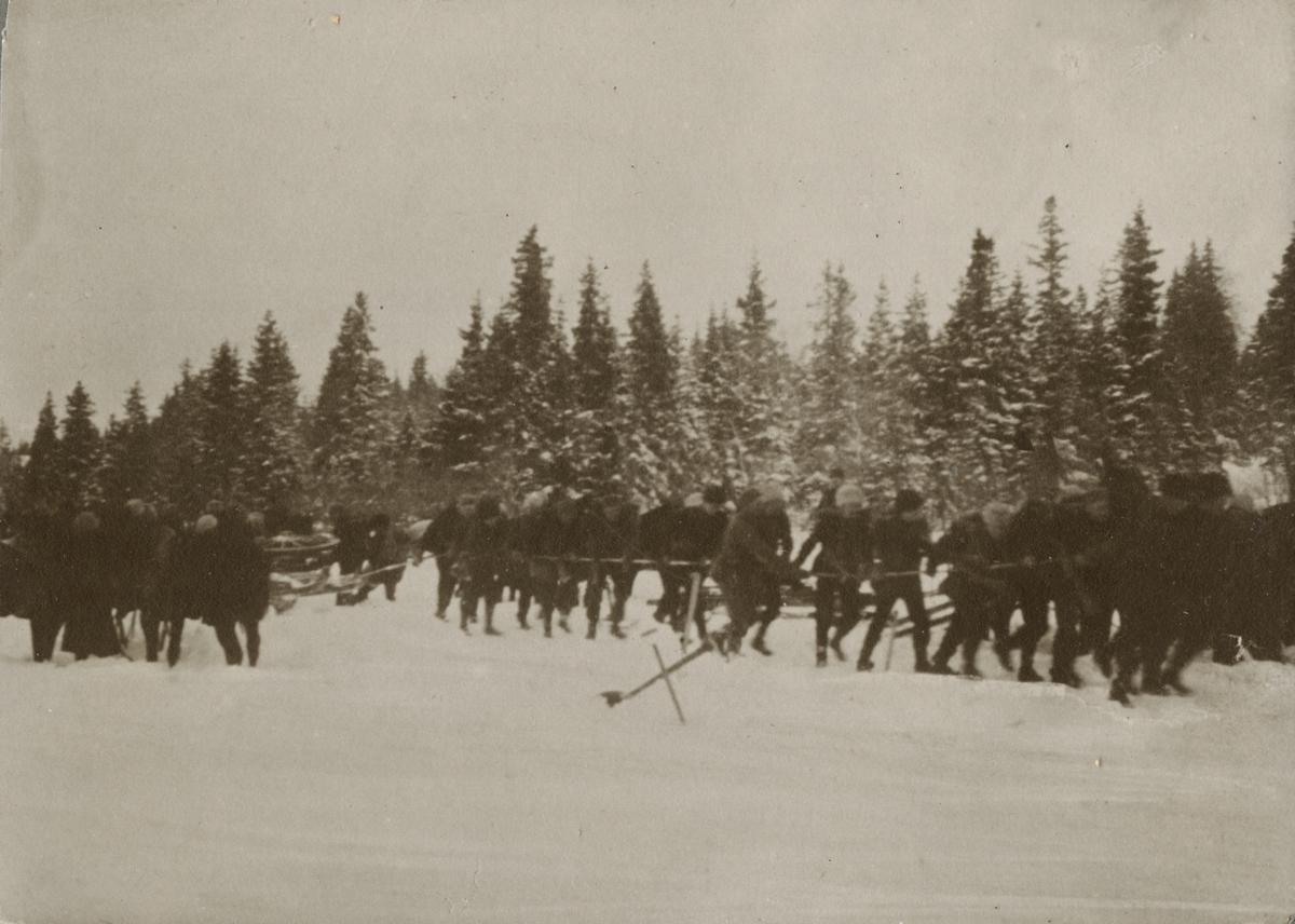 En grupp soldater drar en släde i skogen.