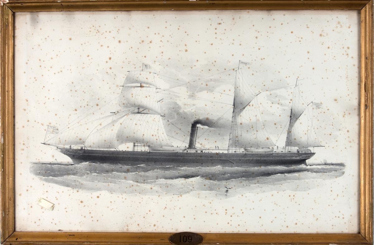 Skipsportrett av DS JUPITER under fart med seilføring. Skipet har seil på alle 3 master, skonnerrigget.I flagget på fortoppen sees det bergenske våpen og unionsflagg akter.