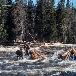 Tømmervase eller tømmerhaug i elva Åsta, som har sine kilder