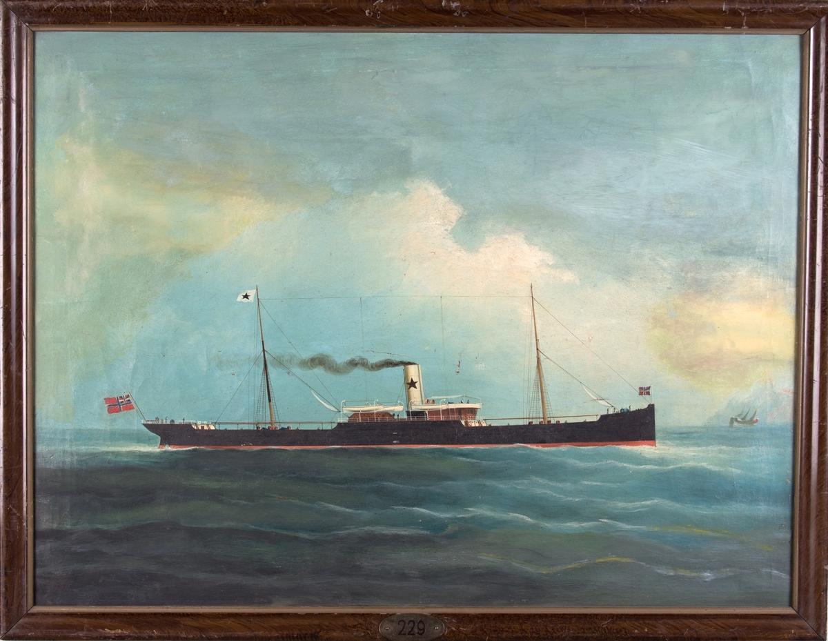 Skipsportrett av DS FLORIDA under fart, kinesisk djunke i bakgrunnen til høyre. Skipet fører norsk handelsflagg med svensk-norsk unionsmerke, og kompanimerket til Chr. Michelsen & Co.