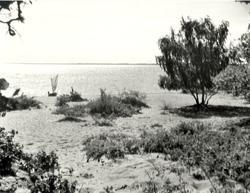 Vita Sand 1949.