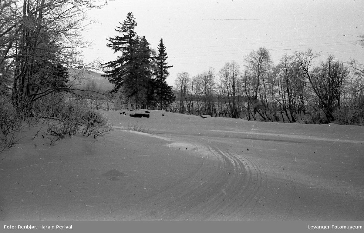 Vintermotiv i Levanger.