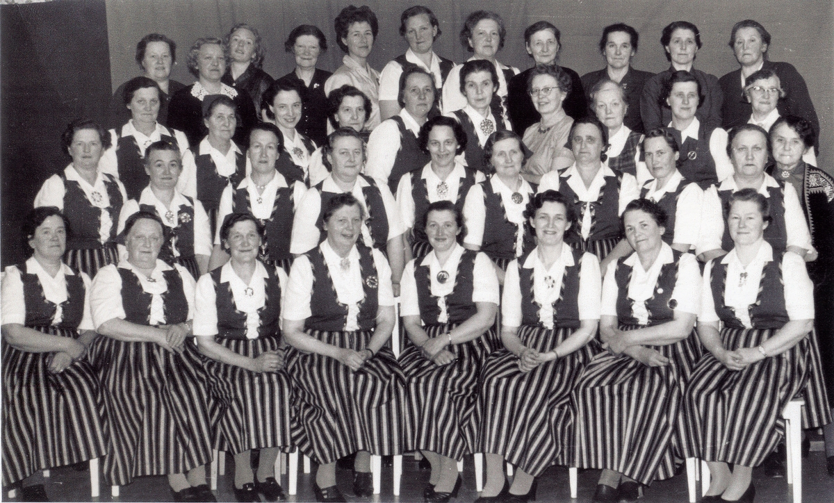 Hølera og Dølven Husmorlag, ca. 1978.
