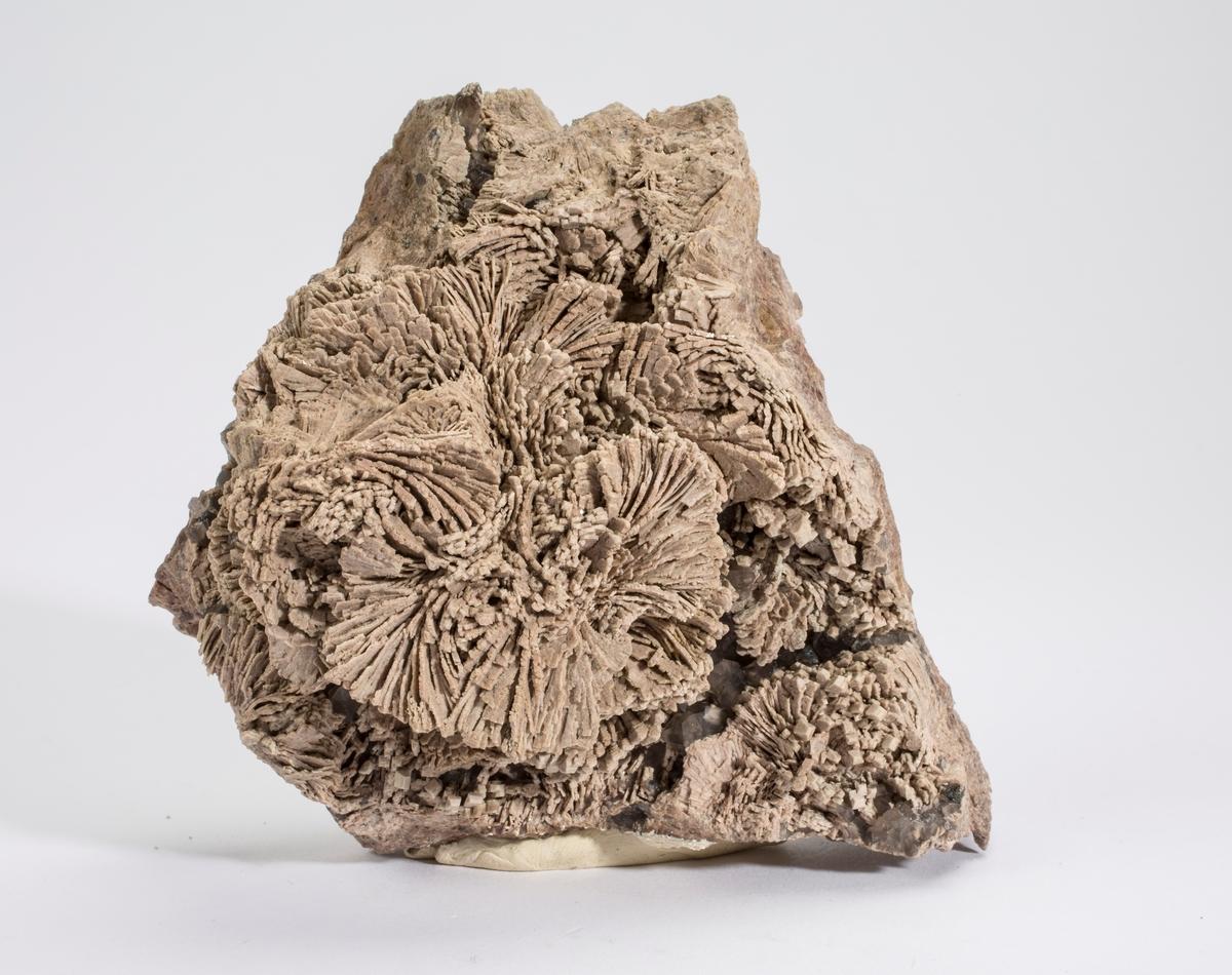"""""""Kreftorthoklas"""", små xls kvarts, kloritt, mikro-xls av hematitt(?) Drammensgranitten."""