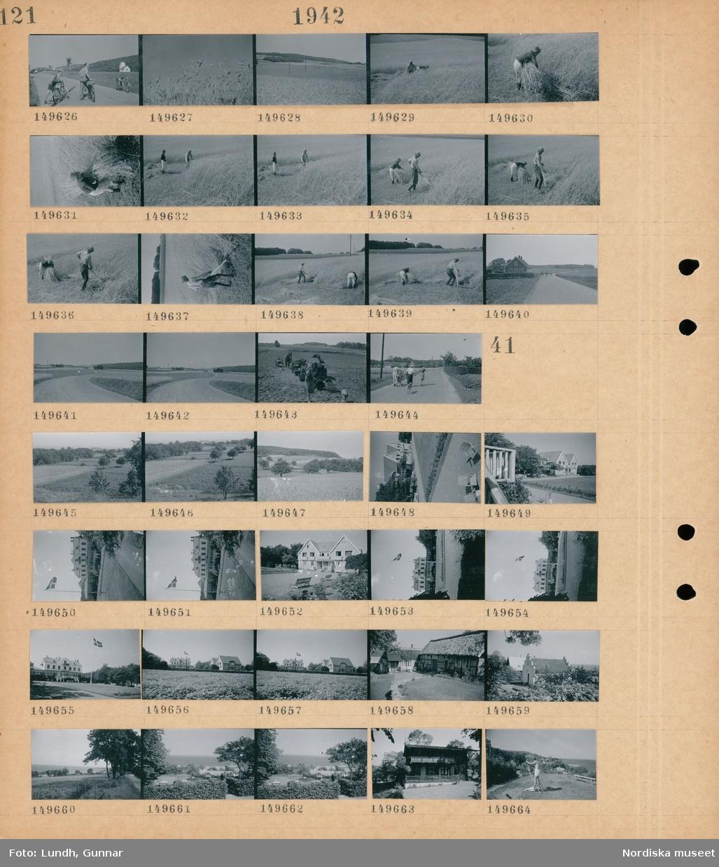 Motiv: (ingen anteckning) ; En pojke och en man med cyklar, landskapsvy med åkrar och skog, en man slår med lie och en kvinna samlar ihop säden, landskapsvy med cyklister på en väg, potatisupptagning.  Motiv: (ingen anteckning) ; Landskapsvy med åkrar och träd, exteriör av hus, en flaggstång med svenska flaggan, en man målar utomhus.