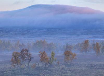 Bildet viser Rendalsfjellet en tidlig høstmorgen.