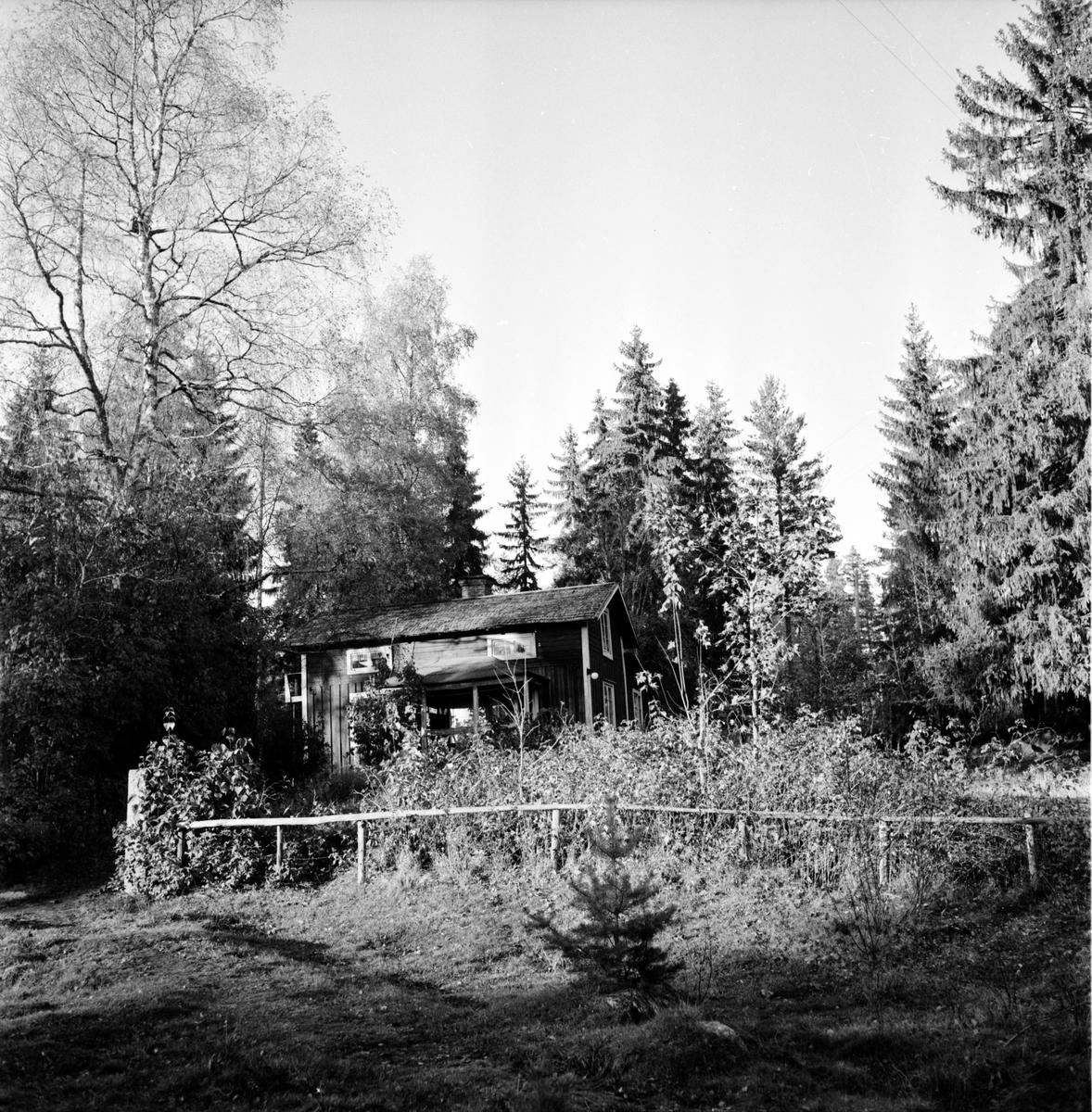 Svensson Olle, Gustafsfors, Hå, Med föräldrar och syskon, 1955